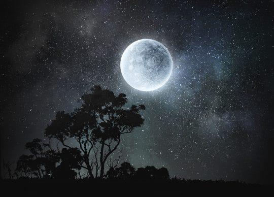 Full Moon in Taurus on Thanksgiving
