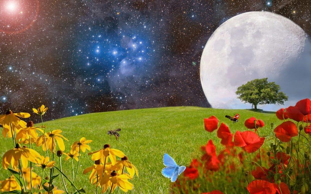 Full Moon in Virgo, Spring Equinox & Happy Holi!