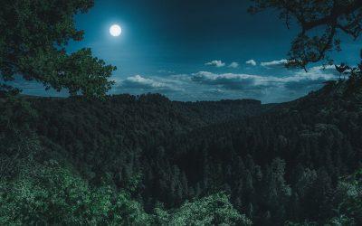 Full Moon February 2020